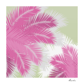 PINK TROPICAL PALM TREES