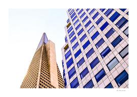 pyramid building and modern building at San Francisco, USA