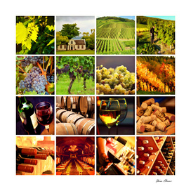 Wine and Wineries Collage