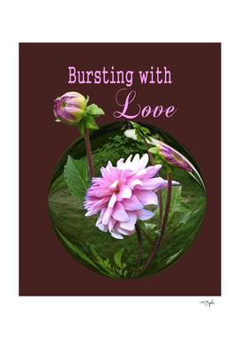 Bursting with Love Dahlia