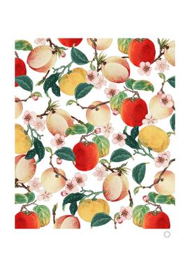 Fruity Summer