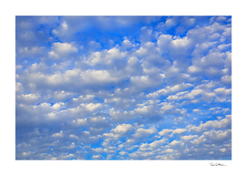 Lopts of tiny clouds
