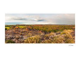 Rocky Escarpment and golden grasses -Kakadu