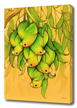 pericos mangos