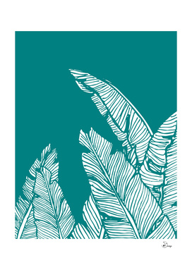 Banana Leaves on Teal