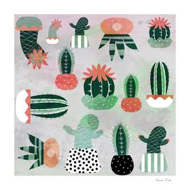 Cactus gray