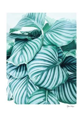 Long  embrace - teal green