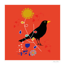 black bird orange