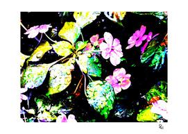 Primavera 3