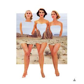 Desert Ladies