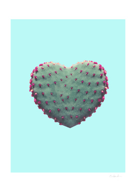 Heart of Cactus