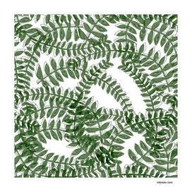 Jungle Flow