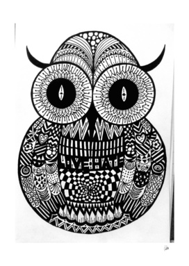 Conflicted Owl