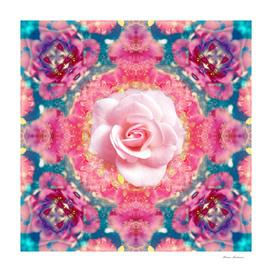 Rose Mandala 1