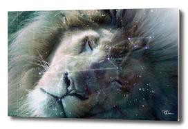 La constellation du Lion
