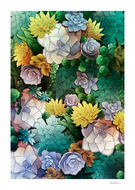 Succulent World