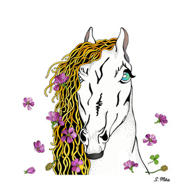 Horse In Wild Flowers