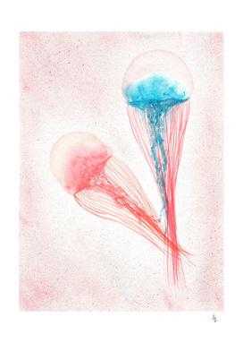 Jellyfish I-v