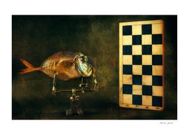 Fish and chess