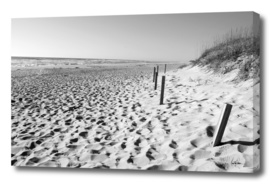 Outer Banks Seascape