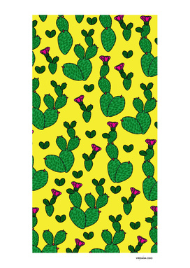 Cacti Beauty