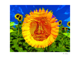 Face of the Sunflower