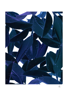 botanical purple rain
