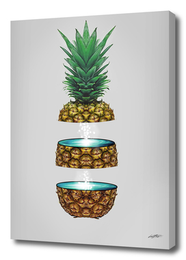 Pineapple Space
