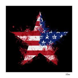 Artistic LXXXIX - Americana Star II / NE