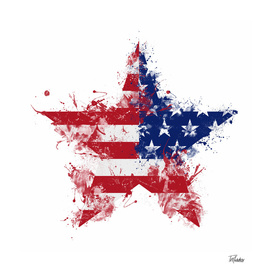 Artistic LXXXVIII - Americana Star I / NE