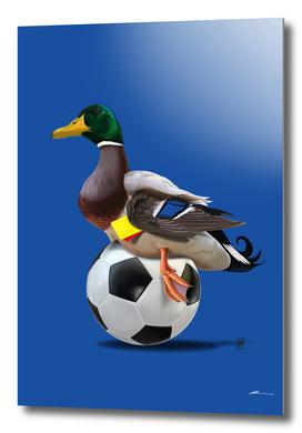 Fowl (Colour)