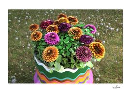 Fancy vase with Dahlias