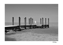 Coconut dock BW