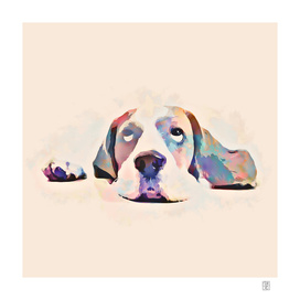 What a dog life - painting in watercolor