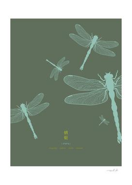 Five Dragonflies