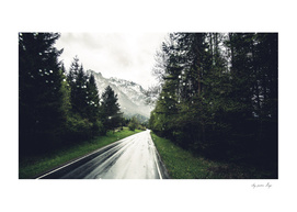 Down the Road - Mountains, Forest, Austria