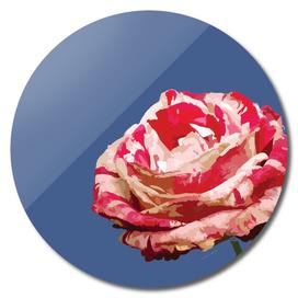 Rose in blue