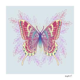 Beautiful Butterfly Unique Design