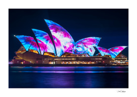 Interesting new Designs on the Opera House at Vivid Sydney