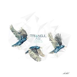 TriangulAirLines