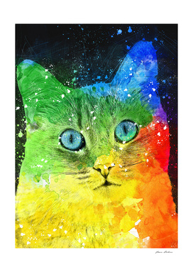Abstract Bright Cat