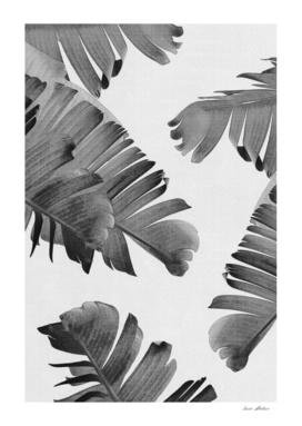 Palm Leaves Monochrome