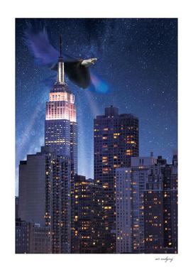 NY space