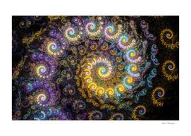Nautilus fractal beauty