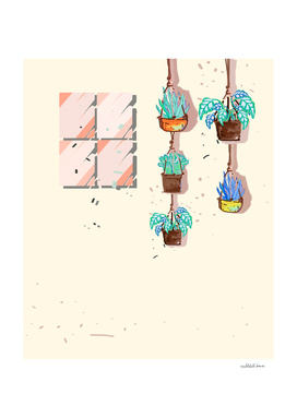 cactus garden - illustration 5
