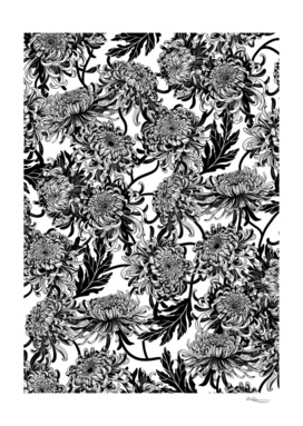 chrysanthemica