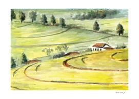 Old Field 2