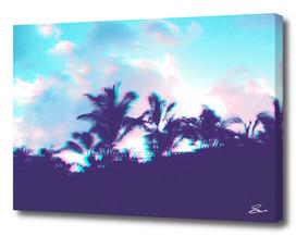 Palm Purple