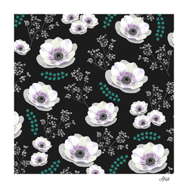 Anemones with black background