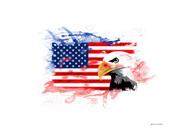 American Eagle, Flag - USA, United States of America
